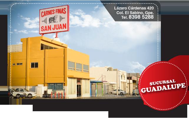 Guadalupe - Eureka soluciones ...